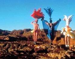 Οι Περιπέτειες της Πρισίλα, Βασίλισσας της Ερήμου (1994)