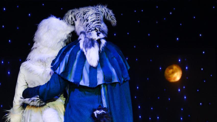Ρωμαίος και Ιουλιέτα… σαν το σκύλο με τη γάτα! | Παιδική παράσταση
