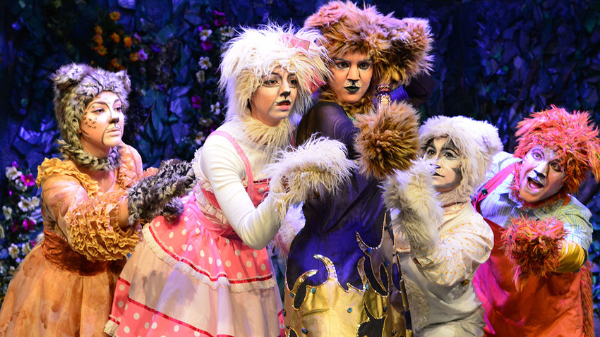 O κήπος με τις 11 γάτες | Θέατρο Κνωσός