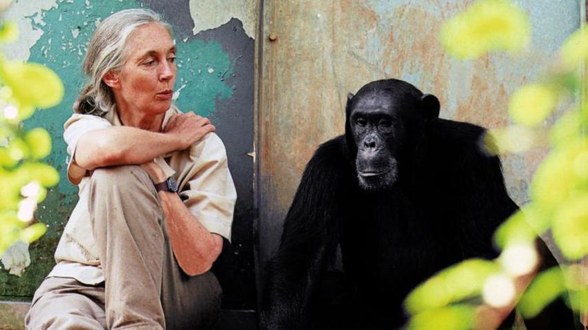 Λόγοι για να ελπίζουμε: Ένα απόγευμα με τη Dr Jane Goodall