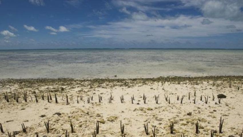 H Κλιματική Aλλαγή και οι παραλίες της Ελλάδας