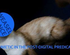 Weasel  Dance: Το μιμητικό στη μετα-ψηφιακή συνθήκη