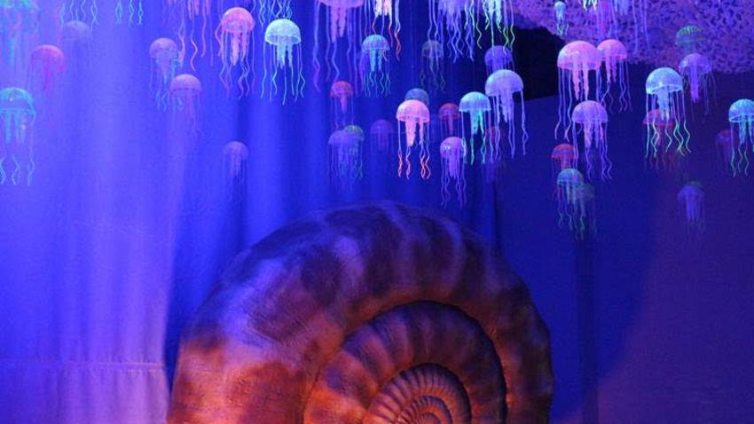 Δεινόσαυροι και τέρατα των θαλασσών | Η Έκθεση παρατείνεται!