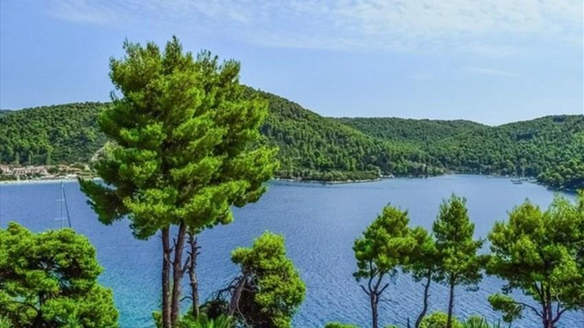 Ευρωπαική Ημέρα Natura στο Ίδρυμα Σταύρος Νιάρχος