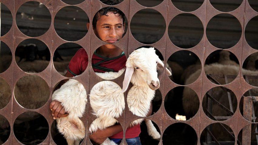 Όψεις καθημερινότητας στη Γάζα | M. Zaanoun