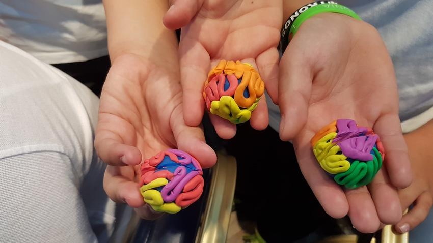 Τα μυστήρια του ανθρώπινου εγκεφάλου αποκαλύπτονται...