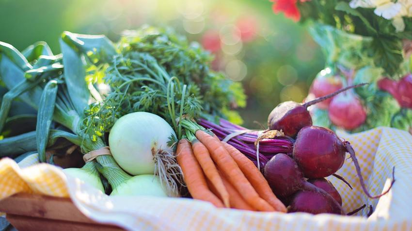 Open Farm Market στο Κτήμα Αρίστη!