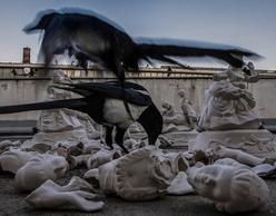 Βίκη Μπέτσου | «Μηχανισμός Διαχωρισμού» στο Ωδείο Αθηνών