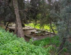 Φιλοσοφικοί Περίπατοι | Ακαδημία Πολιτεία του Πλάτωνος