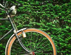 Παγκόσμια Ημέρα Ποδηλάτου   Μια ποδηλατάδα στην Αθήνα
