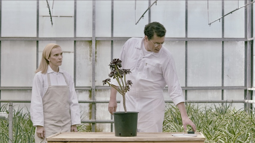 Γ. Δρίβας :: Δομές συναισθημάτων στον Κήπο του Μεγάρου