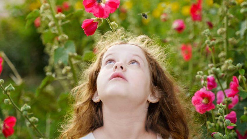 Έλα να γίνεις μέλισσα για μια μέρα! | Εκπαιδευτικό πρόγραμμα