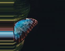 Madama Butterfly στην Εθνική Λυρική Σκηνή
