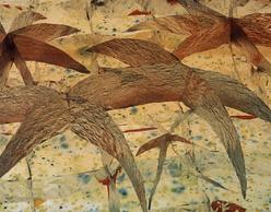 Boyd Webb στη Bernier / Eliades Gallery Athens