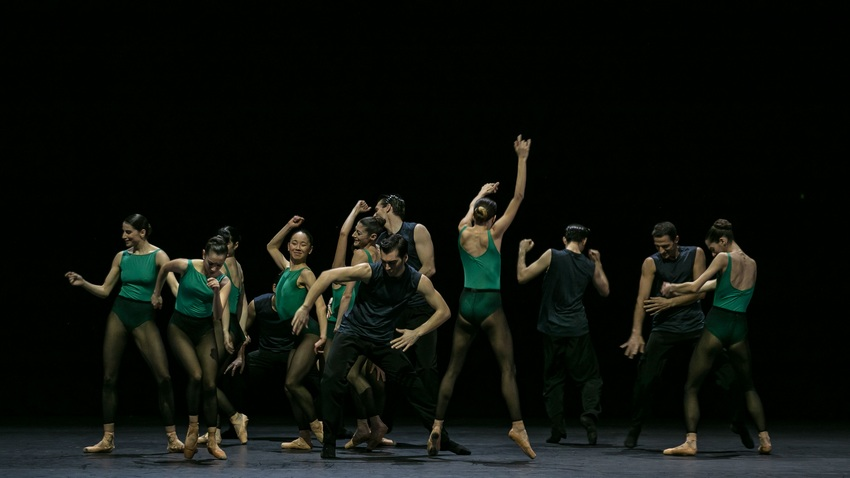 Human Behaviour | Σύγχρονος Χορός από το Μπαλέτο της ΕΛΣ