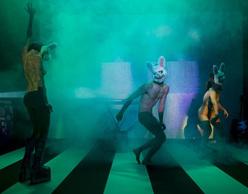 Φεστιβάλ στη Στέγη   FUTURE N.O.W.