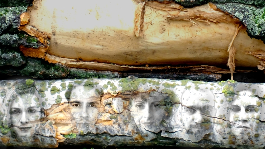 Ομάδα Θέατρου ΑΤΟΝΑλ – Σοφία Μαραθάκη :: Το δάσος