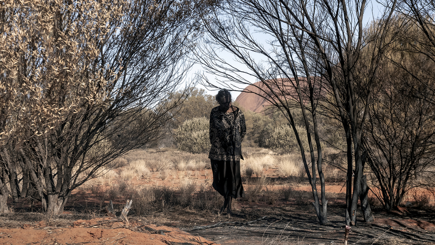 Γιάννης Τζώρτζης | NATURA TRANSITA | Ατομική Έκθεση περιβαλλοντικής φωτογραφίας