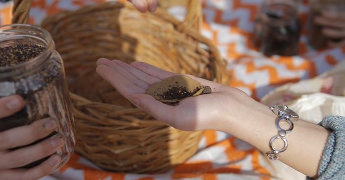 ethelon Days 2019: the butterfly effect | το τριήμερο για τον εθελοντισμό και την κοινωνική προσφορά