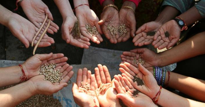 Γνωρίστε το «Πελίτι» και το έργο του | Φυτέψτε παραδοσιακούς σπόρους!