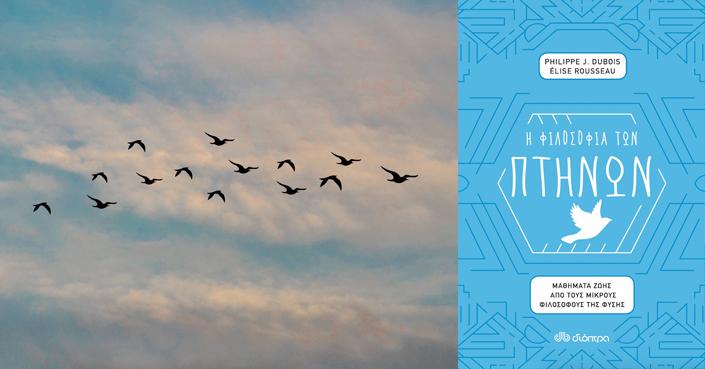Πέντε μαθήματα ζωής από τη «Φιλοσοφία των πτηνών» των εκδόσεων Διόπτρα