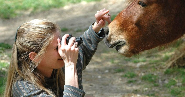 Aliki Steen :: Το σκυριανό αλογάκι και η θεραπευτική ιππασία